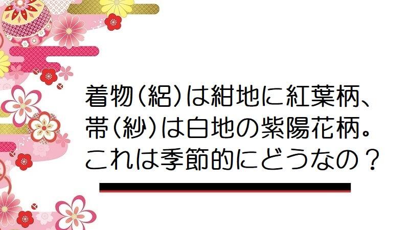 着物(絽)は紺地に紅葉柄、帯(紗)は白地の紫陽花柄。これは季節的にどうなんでしょう?